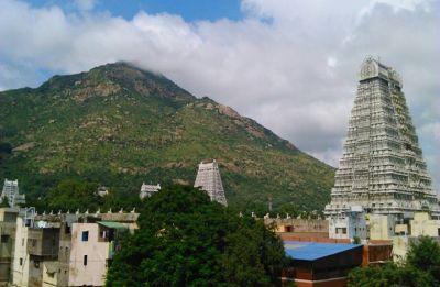 Tamil Nadu: 12 foreign nationals detained for trekking in Tiruvannamalai hills