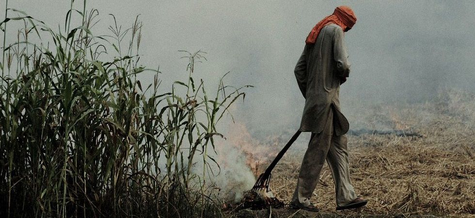 Punjab govt to appoint nodal officers to check stubble burning (Photo- Twitter/@CPR_India)