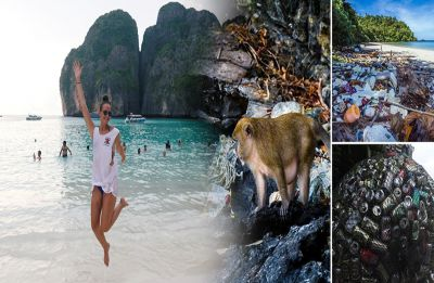 Thailand's most famous Maya Beach is closed indefinitely due to 'over tourism, pollution and human neglect'