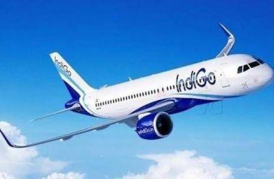 IndiGo's A320 neo plane suffers mid-air engine failure; DGCA probe on