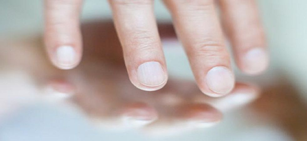 Finger length and sexuality study