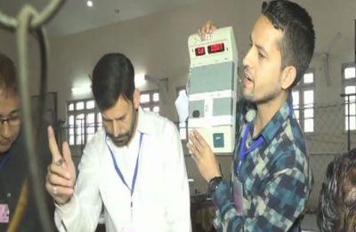 Jammu-Kashmir Civic Body Poll Results: Congress wins 157 seats, BJP 100