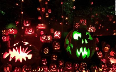 Halloween Of Halloween.Happy Halloween Icc Releases Cricket World Cup Halloween Xi