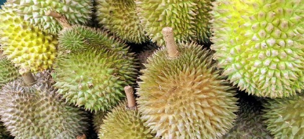 the world's smelliest fruit Durian (Photo: Twitter)