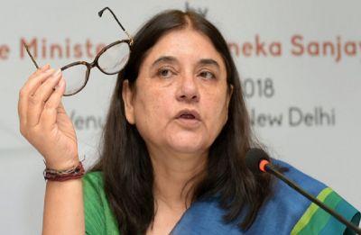 Sack your forest minister, Maneka Gandhi to Devendra Fadnavis; Mugantiwar says let's resign together