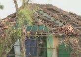 Cyclone Gaja claims 11 lives in Tamil Nadu, Rajnath Singh assures assistance