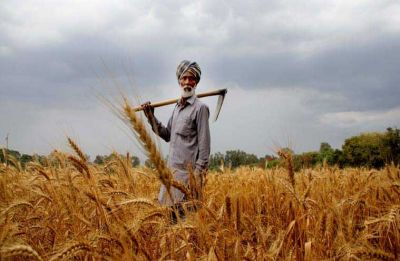 After Hindi heartland states, Congress vows to waive farm loans in Haryana