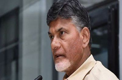 Chandrababu Naidu to hold protest against Modi government in Delhi on February 11