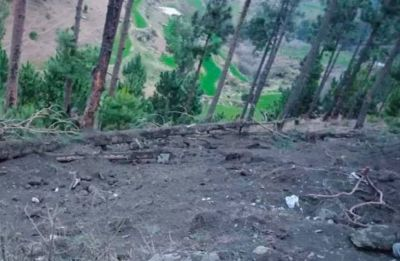 Pakistan blames India for damaging pine trees, plans to move UN accusing it of 'eco-terrorism'
