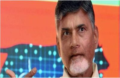 Andhra Pradesh Assembly Elections: Telugu Desam Party releases third list of 36 candidates