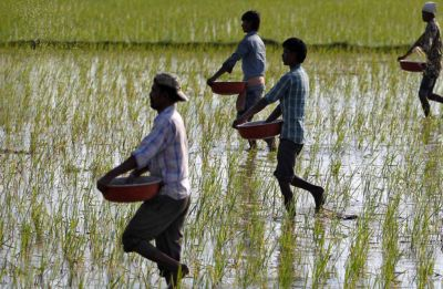 PM-Kisan scheme: About 4.74 crore farmers to get second installment from next month