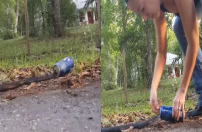 Watch: Florida woman rescues snake stuck in a beer can, video goes viral