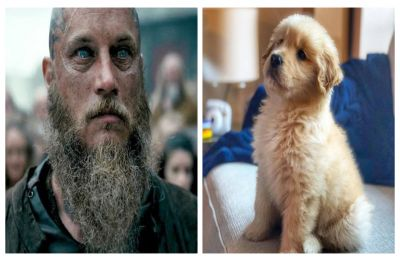 Sorry lumberjack look! Study claims that men with beards carry more germs than dogs