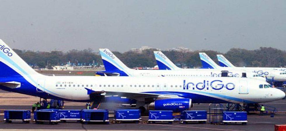 IndiGo airlines (File Photo)