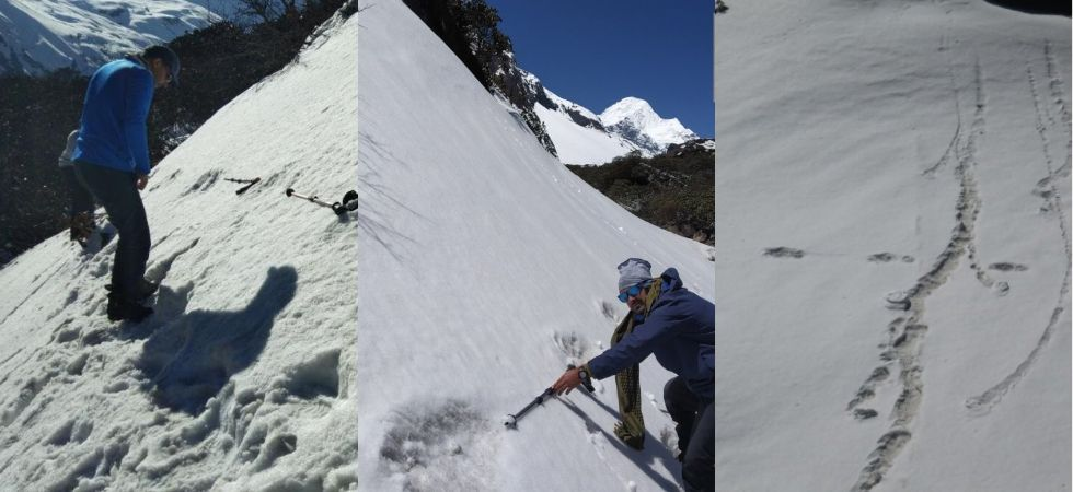 While claims and counter-claims have been part of the Yeti lore, the army's claim forced the world to sit back and take notice. (Photos tweeted by ANI)