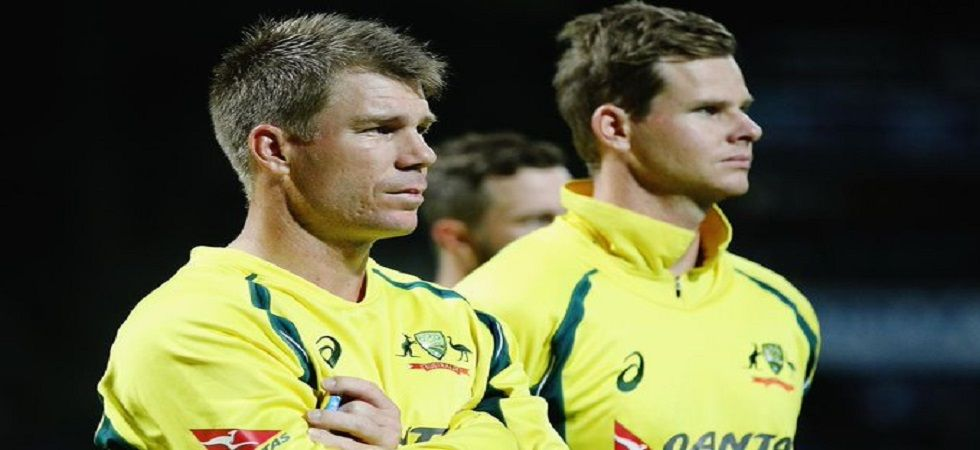 David Warner is averaging 69.2 in the Indian Premier League and he will be key for Australia in the ICC Cricket World Cup 2019. (Image credit: Twitter)