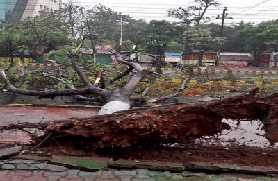 Cyclone Fani: Three killed as storm batters Odisha, PM Modi says Rs 1,000 crore released in advance