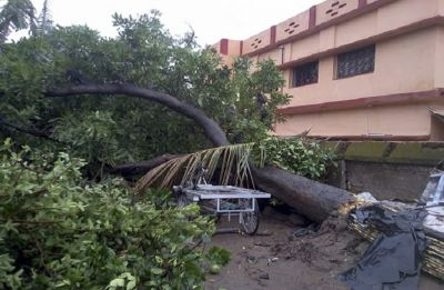 Cyclone Fani hit West Bengal post-midnight, to enter Bangladesh by noon