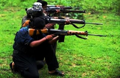 522 killed by Maoists after being termed informers: Gadchiroli Police