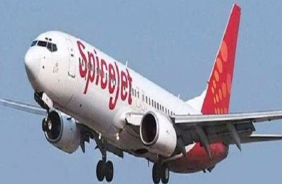 Two SpiceJet Boeing flights suffer mid-air glitches, pilots terminate journeys