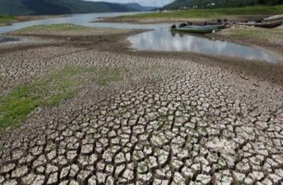 Maharashtra: At least 26 dams hit 'zero water' storage level as on May 18
