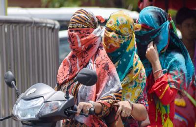 Delhi Transport Department - Latest News, Photos, Videos on Delhi