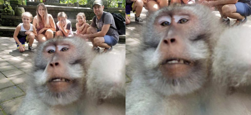 This monkey just photobombed a family picture.