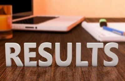 Chhattisgarh TET Result 2019 declared at cgvyapam.choice.gov.in, check your scorecard here