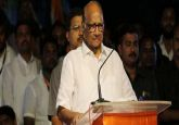 NCP seeks equal number of seats from Cong in Maharashtra assembly polls