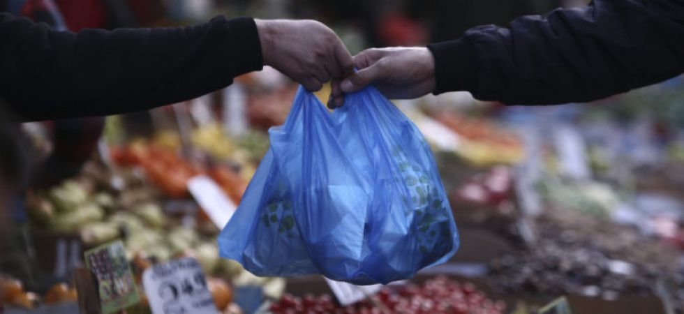 Plastic carry bag (File Photo)