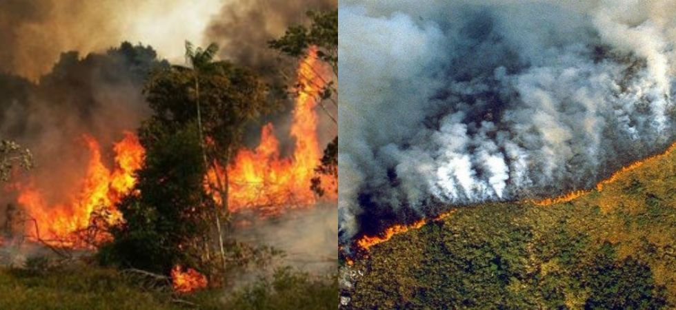 But the WWF has blamed this year's sharp increase on accelerating deforestation in the Amazon, which is seen as crucial to keeping climate change in check. (Photo Credit: Twitter)