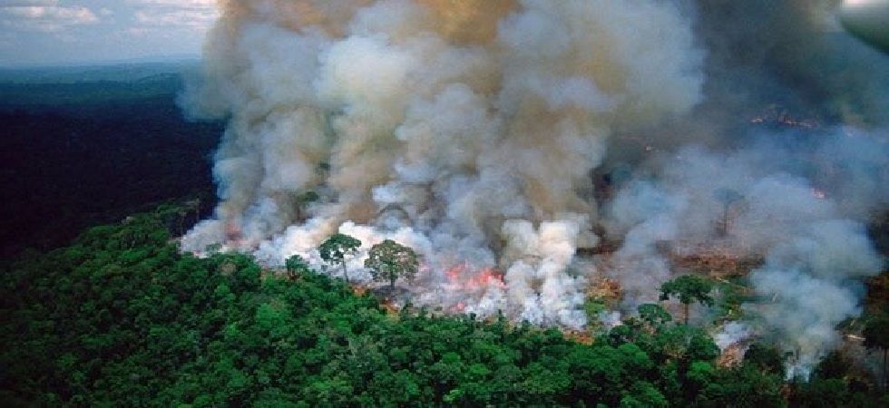 The Amazon must be protected: UN Secretary General Antonio Guterres