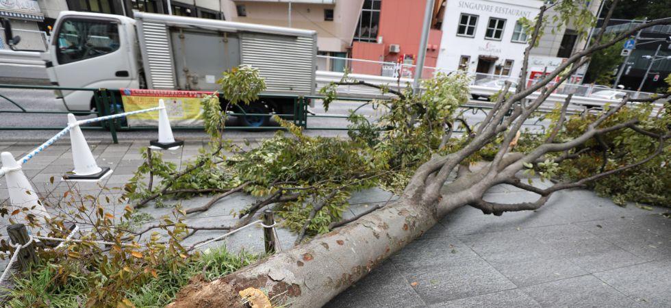 Japan Typhoon Faxai (Photo Credit: IANS)