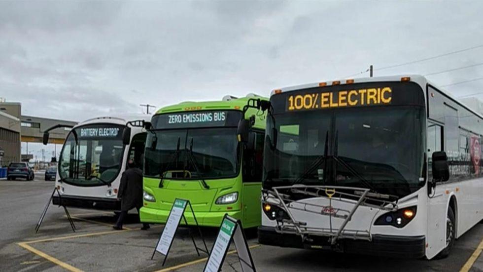 Electric buses (File/Representational Image)