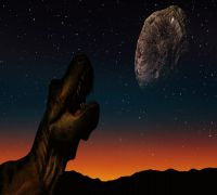 Dinosaurs Were Boiled Alive In Asteroid Impact Over 66 Million Years Ago, Claims Expert