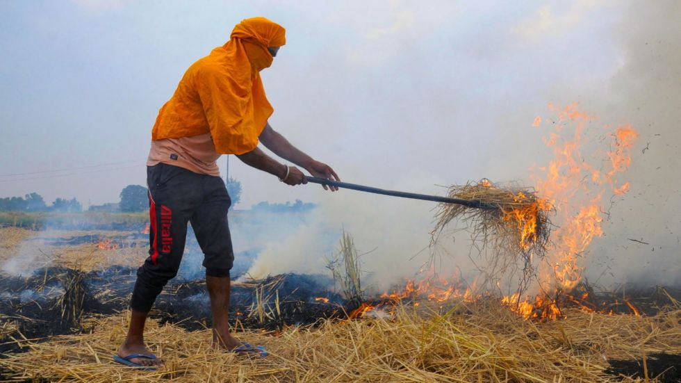 'People are dying …,' says Supreme Court as it orders immediate ban on crop stubble burning