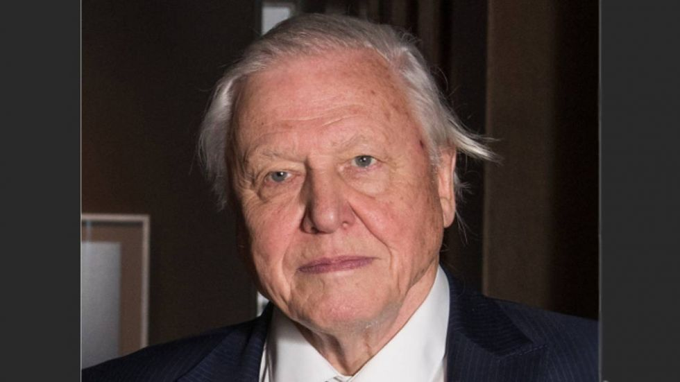 Sir David Attenborough is the younger brother of the director, producer and actor Richard Attenborough who made the film Gandhi.