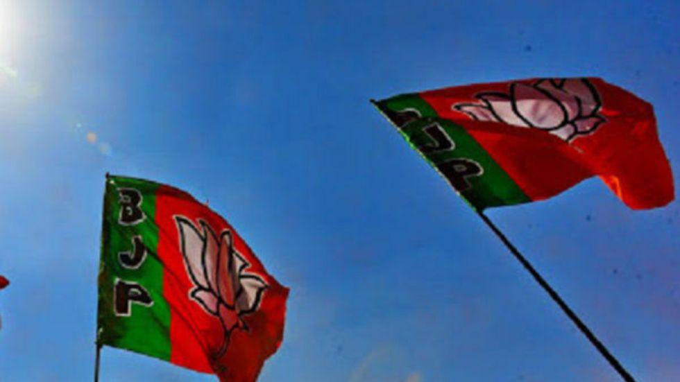 BJP's Murlidhar Mohol Elected As Pune Mayor (Representative image)