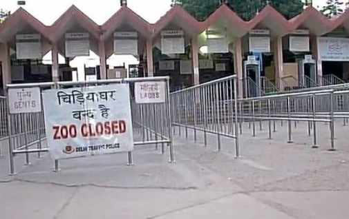 Patna: Zoo closed indefinitely after death of six peacocks by bird flu