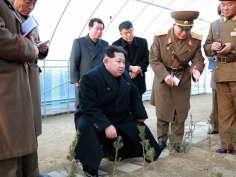 Bizarre photo shoots of Kim Jong-un