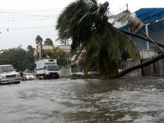 Cyclone Okchi continues to leave trail of destruction schools shut in Maharashtra rescue operation underway