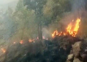 IAF deployed to rescue students trapped in forest fire in Tamil Nadu