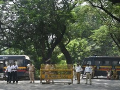 Aarey Protests In Pictures: 1,500 Trees Axed, Mumbai's Green Cover Erodes