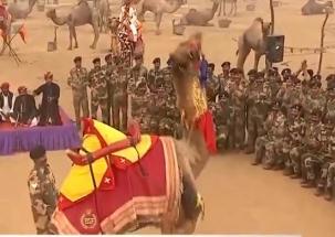 Jai Jawan: Camel dances on tunes played by BSF Jawans