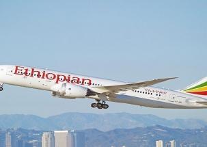 Ethiopian Airlines Boeing 737 crash: Rescuers look for survivors