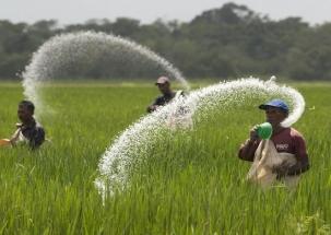 Chunav Lie Detector: Is BJP deceiving farmers in name of cash dole?