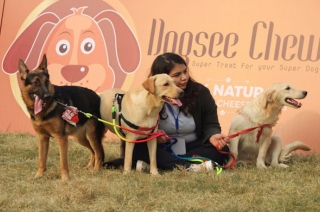 Pet fest organised at NSIC Okhla ground