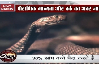Madhya Pradesh: Fear of snakes grips Arud village in Khandwa