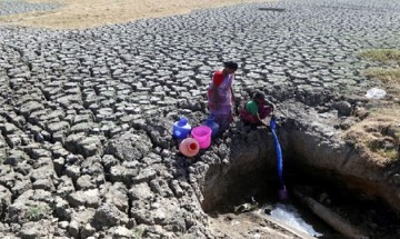 Chennai crippled by acute water crisis: IT firms, hotels worst hit